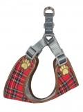Scotland Auburn Side